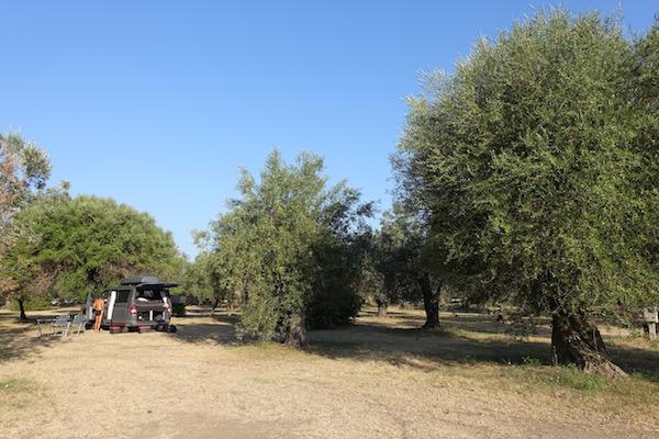 Camper van in olive grove Paestum Italy