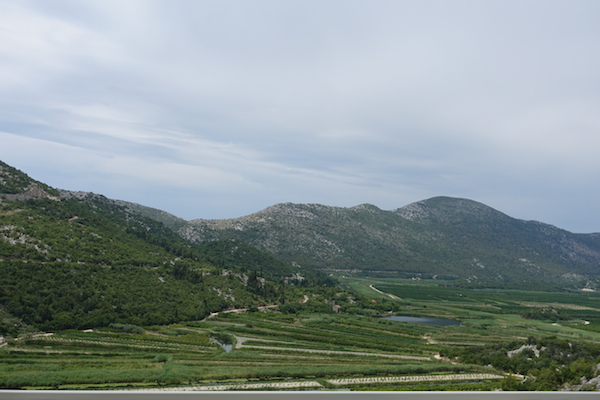 Fertile plains near coast in Croatia