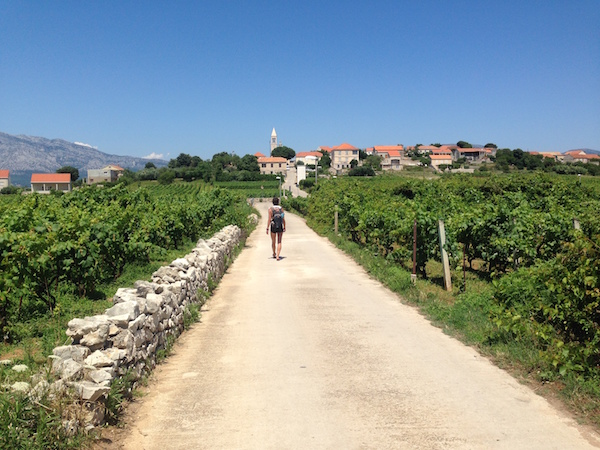 Walking through Vineyards Croatia