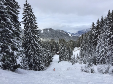 Enjoying off-piste power, Pleney Morzine