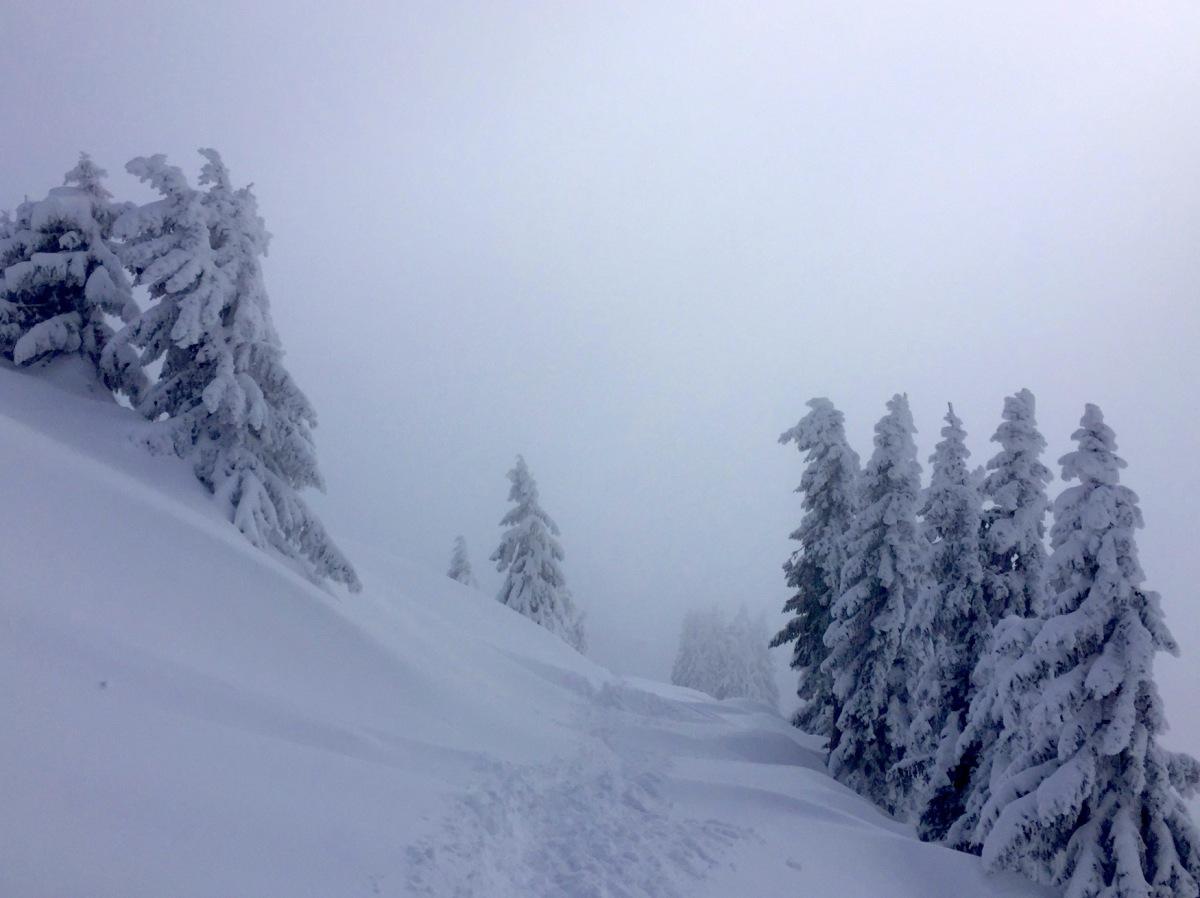 Serene-snowscene-Avoriaz